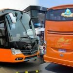 Info Bus Pariwisata di Jogja